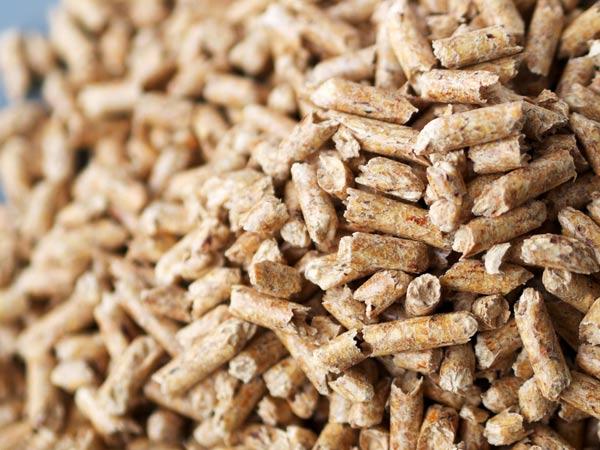 Vendita pellet sissa trecasali soragna prezzi pellets - Stufe a pellet poco profonde ...
